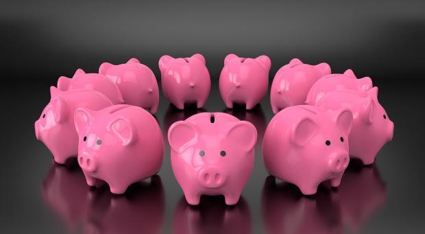 стоят в круге розовые свинки-копилки