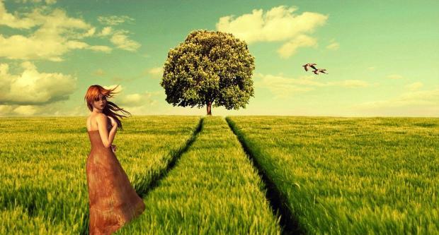 девушка идет к дереву по зеленому полю