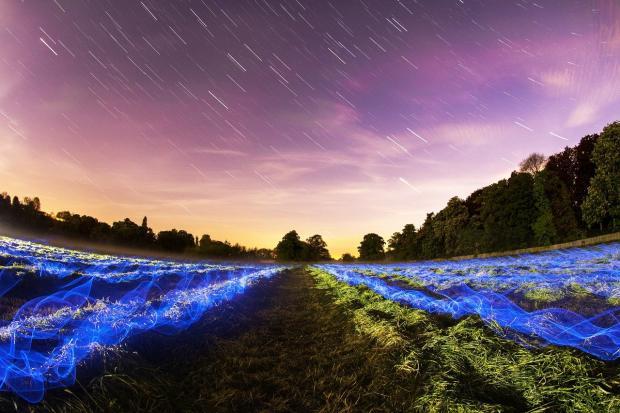 звездопад Пегасиды над зеленым полем