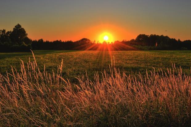 солнечный закат над полем