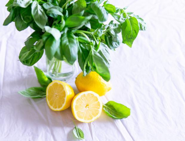 свежий базилик и лимоны