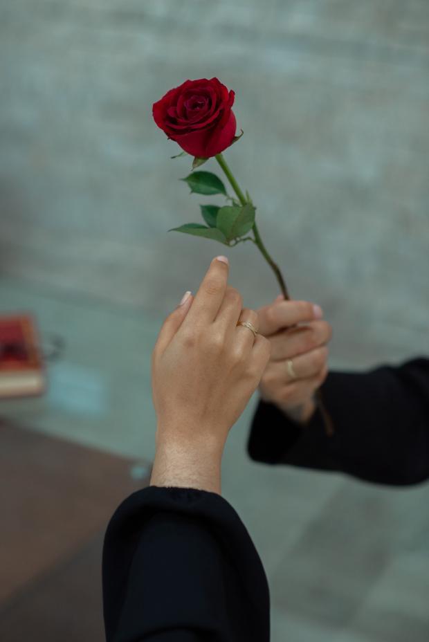 мужчина дарит девушке красную розу