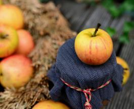 Варенье из яблок дольками: рецепт приготовления вкусного домашнего лакомства