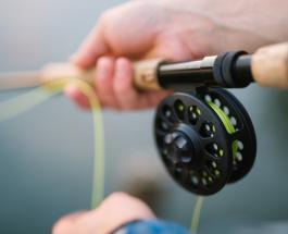 В США поймали рыбу с зубами, похожими на человеческие: фото