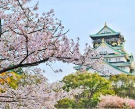 Япония создала 213 видов кимоно в честь каждой страны, участвующей в Олимпиаде-2020