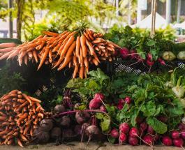 7 растений, которые можно посадить в августе и осенью собрать урожай