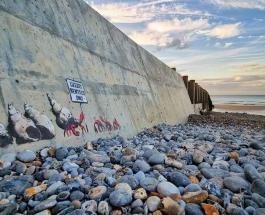 Одна из новых картин загадочного художника Бэнкси повреждена вандалом