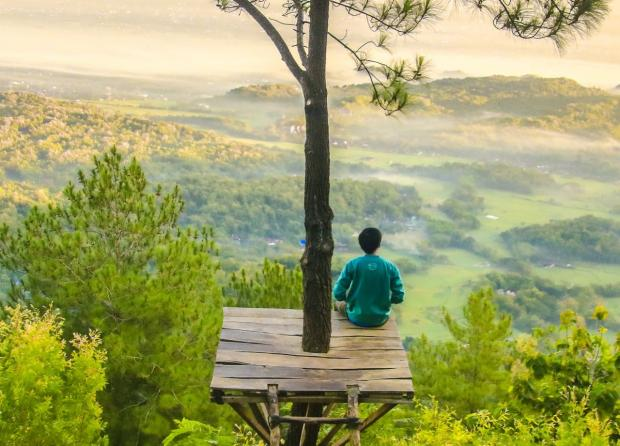 человек сидит на деревянном помосте на высоком дереве