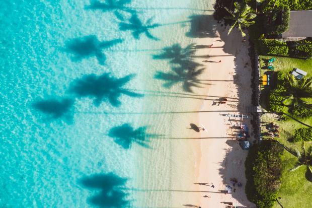 тени пальм на голубой воде моря и пляж с людьми