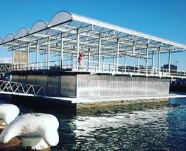 Первая в мире плавучая ферма с коровами на 3-м этаже: необычный нидерландский проект