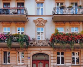 Какие цветы могут зимовать на балконе и как подготовить безопасное пространство