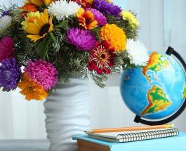 Открытки с Днем учителя 5 октября: картинки с поздравлениями для любимых педагогов