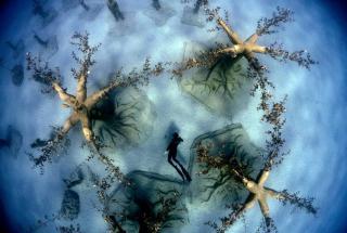 Новой достопримечательностью Кипра стал подводный музей скульптур: фото и видео