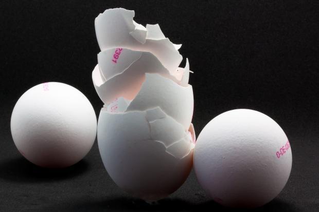 яичная скорлупа, два яйца