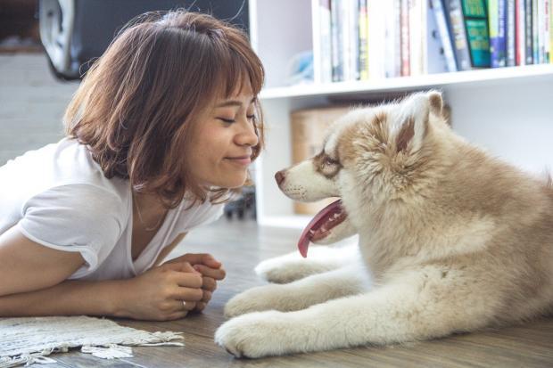 девушка в белой футболке лежит на полу рядом с собакой