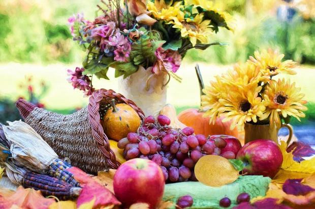 рог изобилия с фруктами и цветами