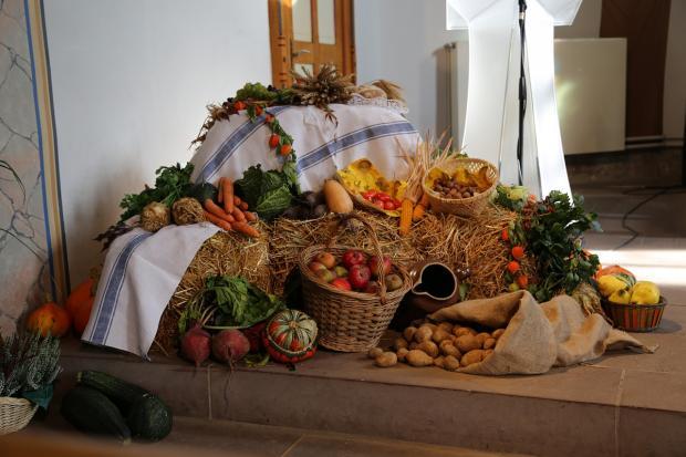 собраны овощи с огорода