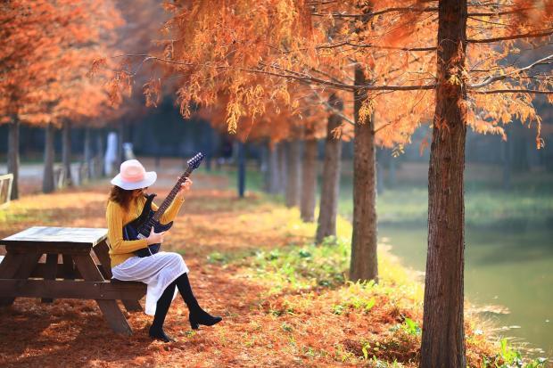 девушка играет на гитаре сидя на осенней аллее