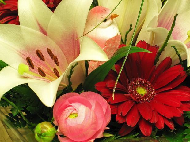 красиво оформленный букет из ярких крупных цветов