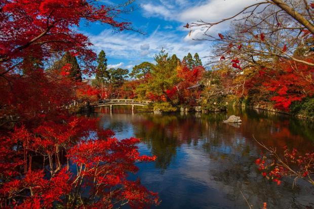 красивый осенний пейзаж у озера