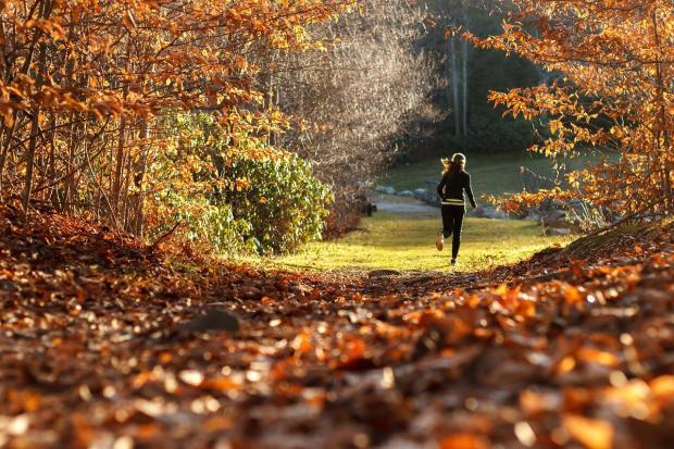 девушка бежит по лесной осенней просеке