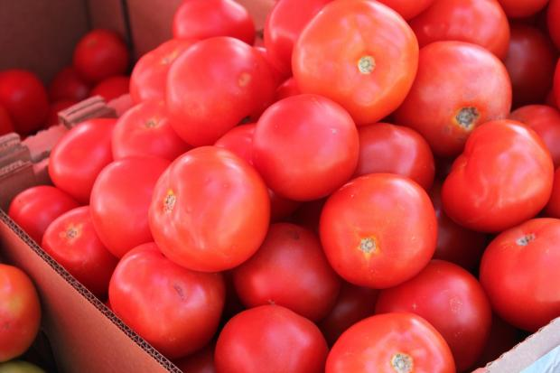 в картонную коробку насыпаны красные помидоры