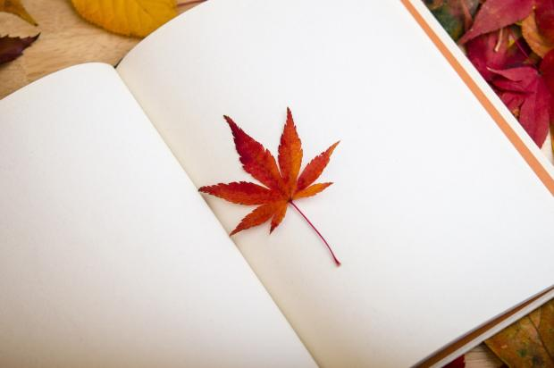 осенний листик в книге