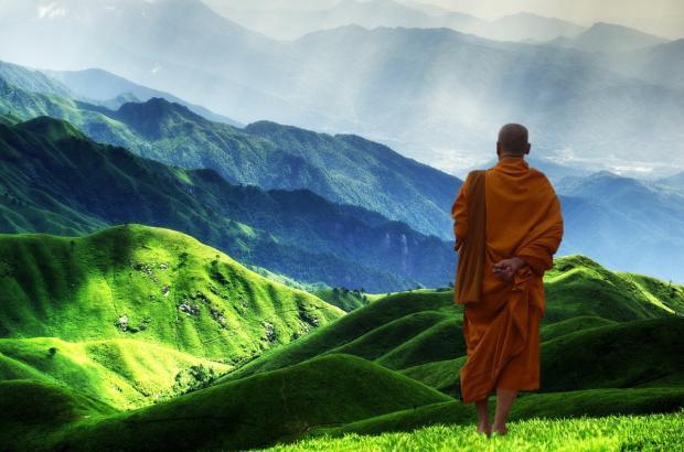 тибетский монах смотрит на зеленые холмы