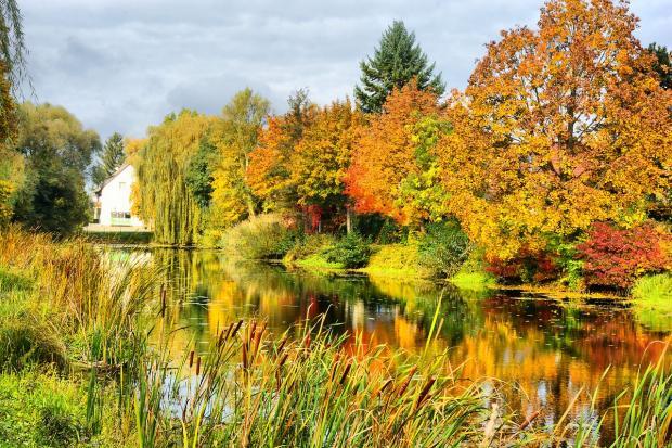красивый осенний пейзаж с озером
