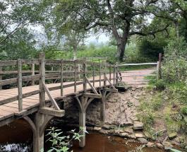 Деревянный мостик из книги о Винни-Пухе будет выставлен на аукцион