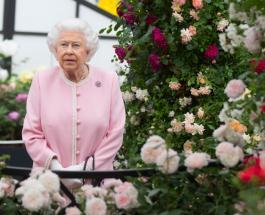 Елизавета II провела первое мероприятие в Виндзорском замке после длительных каникул