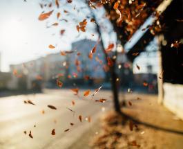 Магнитные бури сегодня: прогноз на 14 октября не вызывает опасений