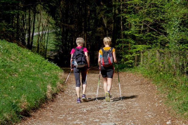 две женщины идут по тропинке