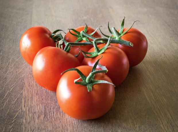 красные спелые помидоры