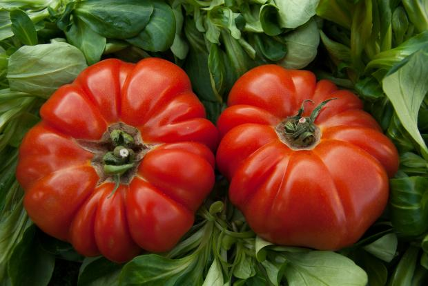помидоры и зелень